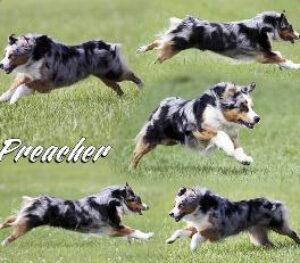 ThePreacher_01
