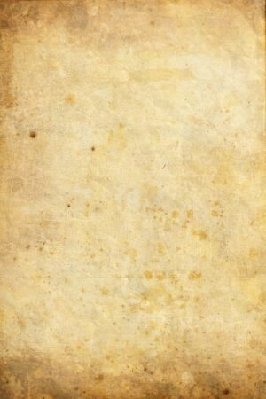 paper(4)
